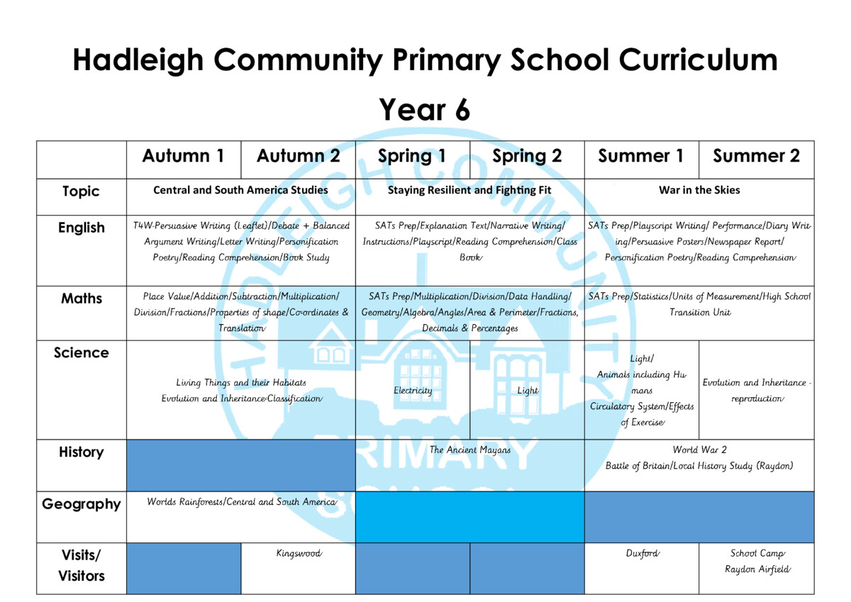 thumbnail of DOC Year 6 Curriculum Revised 2